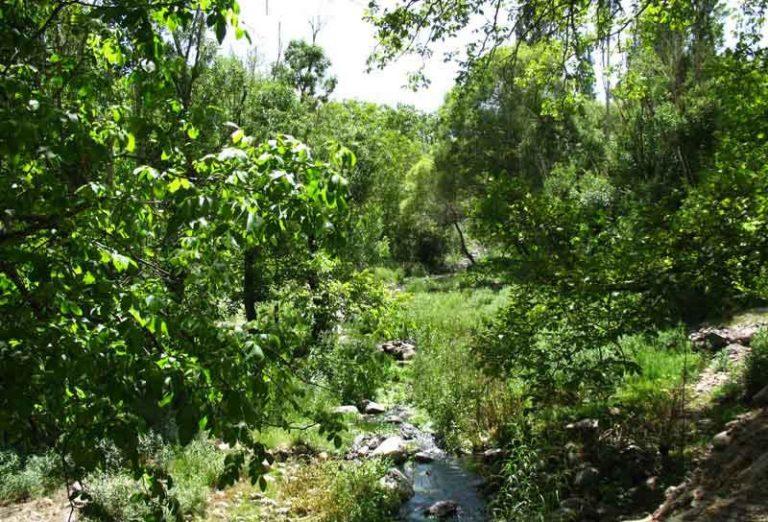 آبشار گیشیگان راین کرمان